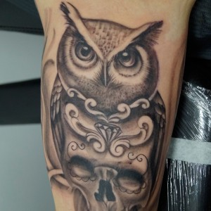 Owl-Scull